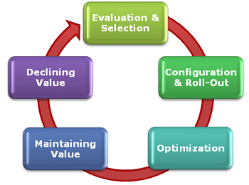 ERP Optimization stage of ERP life cycle